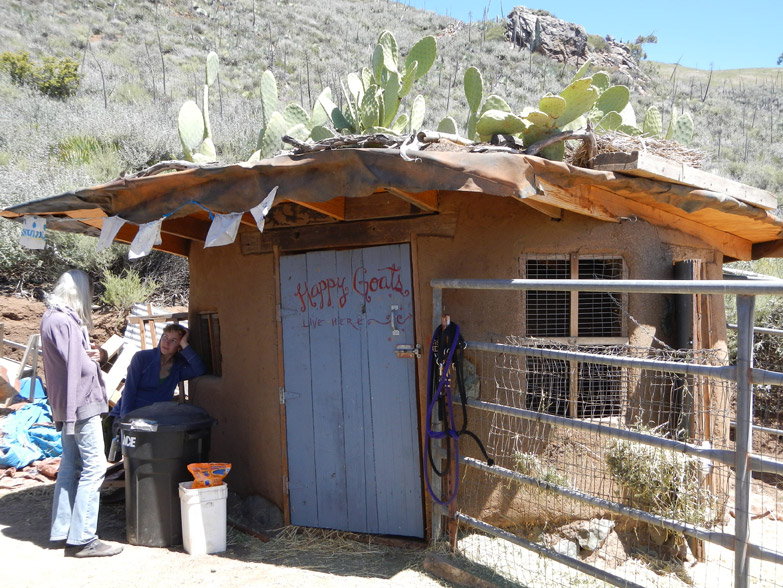 Cob goat shelter