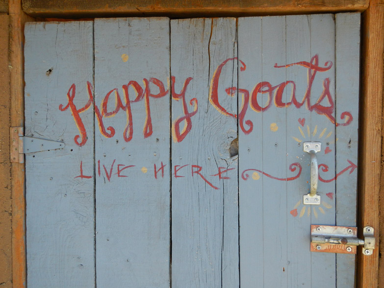 Happy Goats Live Here